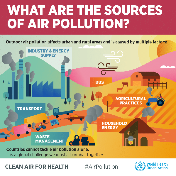 Who Europe Infographic What Are The Sources Of Air